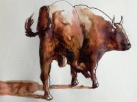 un taureau à bourbonne les bain( 52)